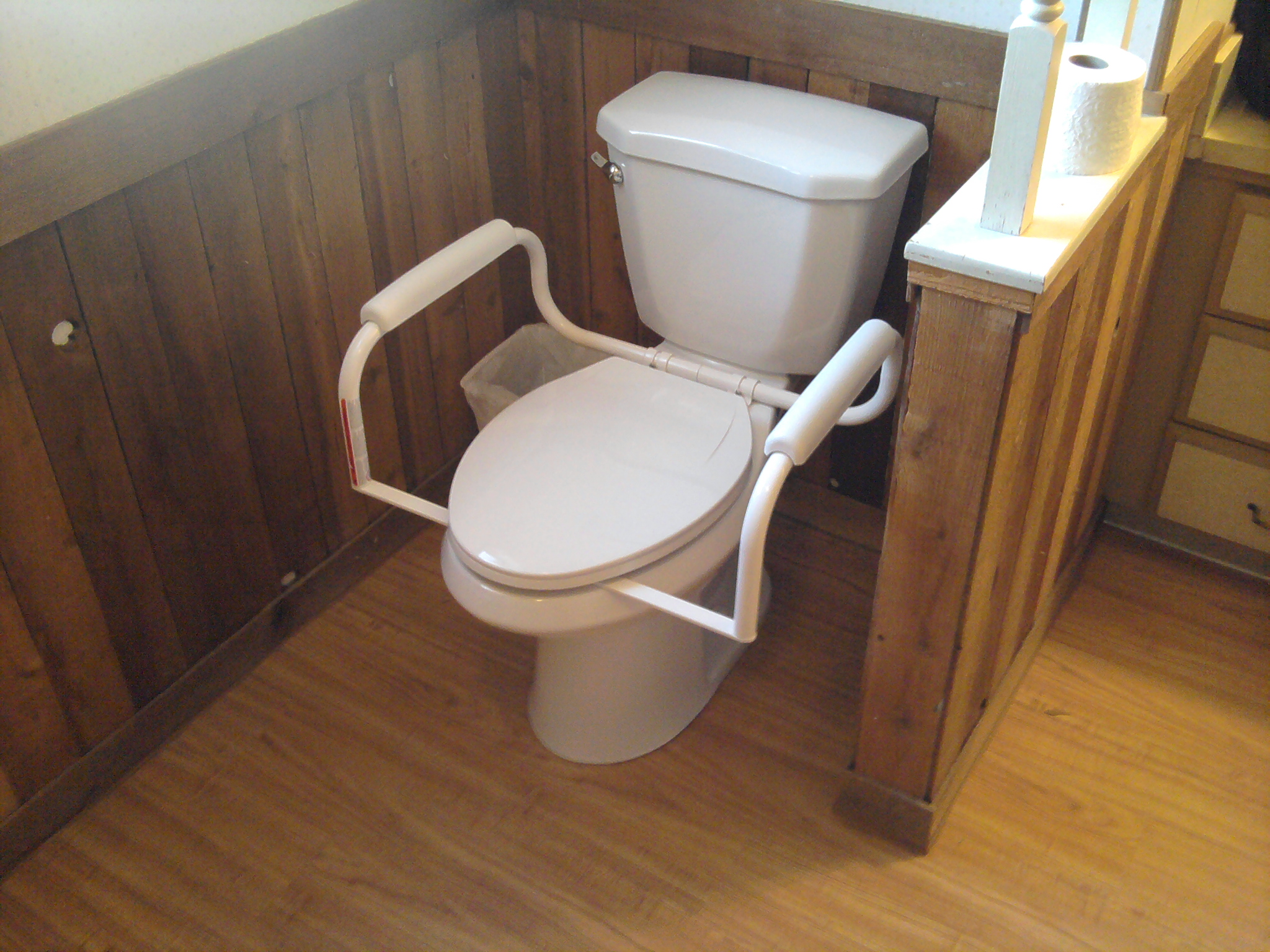 Handicap toilet - Handicap bars for bathroom toilet ...